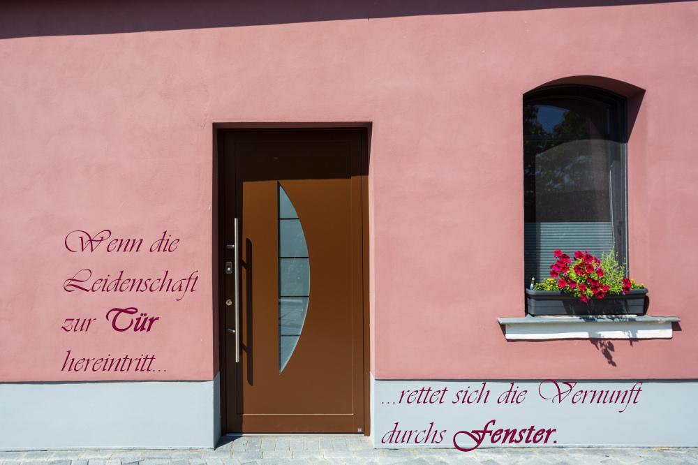 Haustür Tür braun Fingerscan